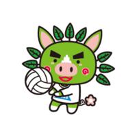 バレーボール(身・知)