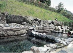 花野温泉 たぬき湯