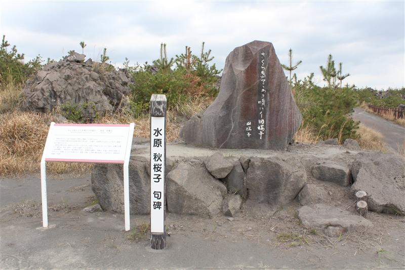 水原秋桜子句碑