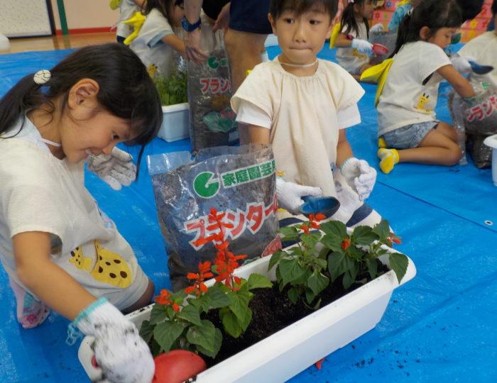 松元中央保育園で推奨花の定植を行いました