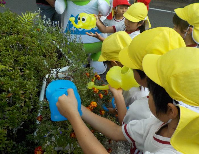 学校法人共立学舎共立幼稚園で推奨花の育成状況を取材しました!~花育てリレー~