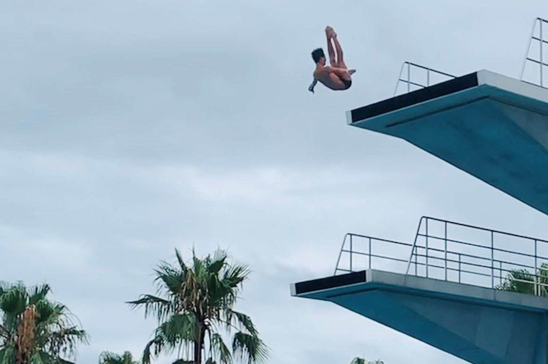 水泳(飛込)